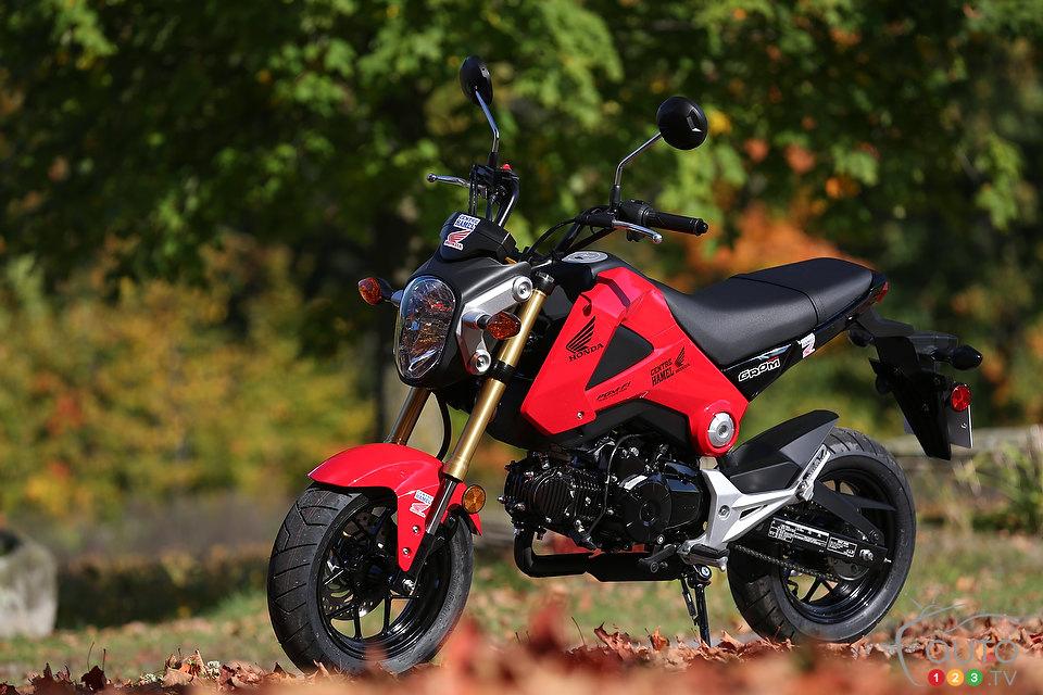 Honda Grom Review >> Photos 2014 Honda Grom Review