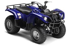 2010 yamaha grizzly 125 atv. Black Bedroom Furniture Sets. Home Design Ideas
